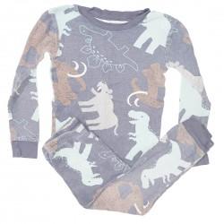 Dinosaur Pajamas Boys Size 5T